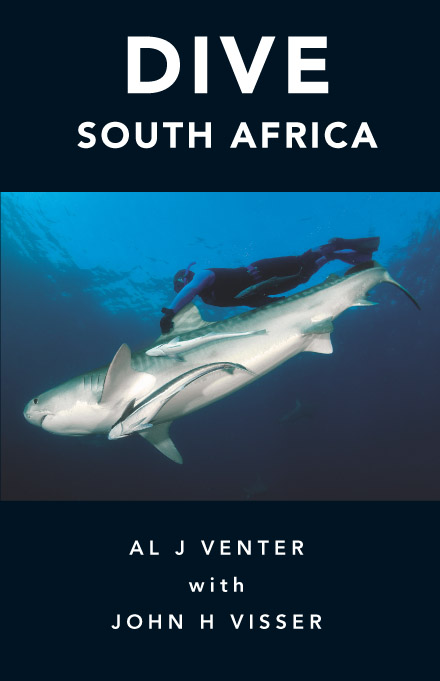 DIVE SOUTH AFRICA by al venter