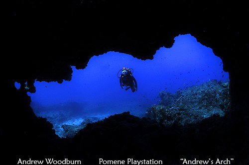 Dive Andrews Arch on Pomene Playstation reef copy right A Woodburn