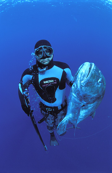 copyright Andrew Woodburn, spearfishing for wahoo in the indian ocean