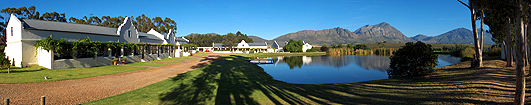 copyright Andrew Woodburn Morgansvlei Vinyard, tulbagh valley south africa