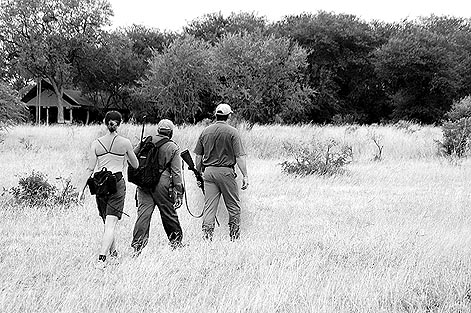 copyright Andrew Woodburn www.woodburnphoto.co.za retruning to plains camp after a 6km walk through wild african bush with game rangers